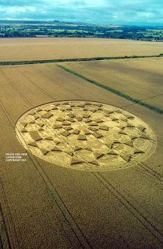 Crop Circle at Etchilhampton (2), nr Devizes, Wiltshire, United Kingdom. Reported 19th August 2015