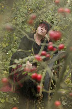 fotografia - portret niezwykły: jesienne róże