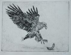 Eagle drypoint Etchings, Moose Art, Eagle, Animals, Animales, Animaux, Animal, Animais