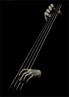 Coffeenuts. #bassist #music #strings http://www.pinterest.com/TheHitman14/music-in-picture-%2B/