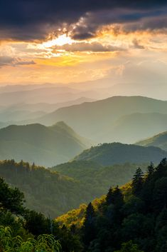 Landscape Photograph - Blue Ridge Parkway Nc Woolyback Splendor by Robert Stephens The multi-layered splendor of the Great Smoky Mountains, as seen from an overlook on the Blue Ridge Parkway near Cherokee, NC Blue Ridge Parkway, Smoky Mountain National Park, Smokey Mountain, Mountain Sunset, Mountain High, Green Mountain, Mountain Biking, Mountain Vacations, Appalachian Mountains