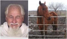Starved And Emaciated Animals Removed From A Property in Ellis County! Max Penalty For Alvin Nelson! | PetitionHub.org