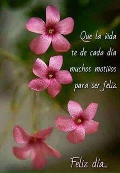 Pensamiento Positivo (@CitaPositiva) | Twitter