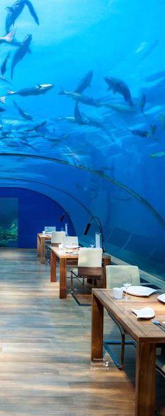 Underwater Restaurant at The Manta Resort & Spa - Pemba Island - Zanzibar | Indian Ocean
