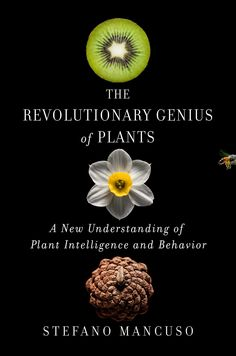 The Revolutionary Genius of Plants: A New Understanding of Plant Intelligence and Behavior by Stefano Mancuso - Atria Books Plants Online, Revolutionaries, So Little Time, Inventions, Behavior, Optimism, Thought Provoking, Amazon, Wall Street