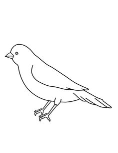 Canary Bird Outline Coloring Pages : Best Place to Color Bird Coloring Pages, Coloring Pages For Kids, Bird Outline, Canary Birds, To Trace, Spring Birds, Online Coloring, Bird Pictures, Black Canary