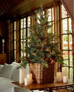 """Blue Spruce 54"""" Artificial Christmas Tree                                                                                                                                                      More"""