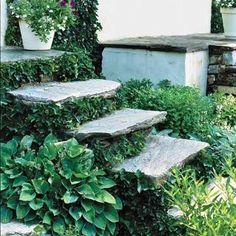 Anna Vattenkannas Trädgård: Grönskande trappor i trädgården - inspiration