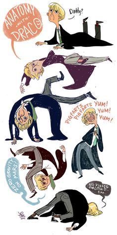 Bahaha Draco