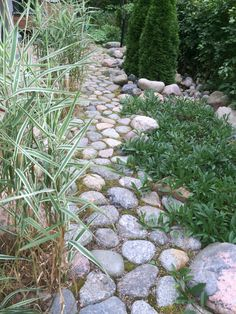 Stepping Stone Walkways, Doorway, Garden Planning, Garden Paths, Garden Inspiration, Balcony, Rocks, Sidewalk, Gardens