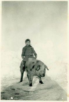 """Foto de época """"El jinete de tocino"""" instantánea antigua foto negro & blanco…"""