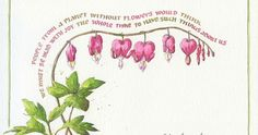 Everyday Artist: Bleeding Heart Sketch with Watercolor Calligraphy Everyday Artist: Bleeding Heart Sketch with Watercolor Calligraphy Watercolor Journal, Watercolor And Ink, Watercolor Flowers, Calligraphy Watercolor, Calligraphy Artist, Watercolour Painting, Bleeding Heart Flower, Bleeding Hearts, Sketchbook Layout