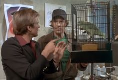 Murdock: If only we had a parrot. We'd have all the answers. We've got to find Barry's parrot. Elaine:  I don't  think barry has a parrot.  Long John Silver had a parrot, Blackbeard had a parrot, Bluebeard had a parrot, he wasn't  even a pirate, but he had a parrot. BA: Hey man we aint got a parrot. ... Murdock, talking about the old sea captain: I bet even his parrot was bloodthirsty. Barry: Well I don't know, actually none of my research turned up any mention about a parrot. HM: He had a…