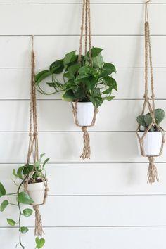 Simple DIY Macrame Plant Hanger with Video Tutorial