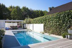kleine tuin met zwembad - Google zoeken Outdoor Spaces, Indoor Outdoor, Outdoor Living, Outdoor Decor, Small Pools, Terrace Design, Beautiful Pools, Backyard, Patio