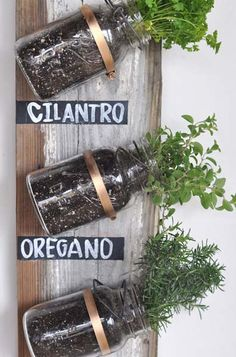 Great idea for herbs in the kitchen or flowers and/or ivy in other rooms