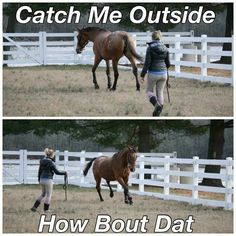 Finally a funny one! Cash me outside. Equestrian Problems