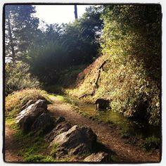 Babbling brook enjoyed in silence
