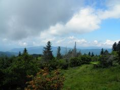 Andrew's Bald, seen here, is one of the most popular destinations in the Great Smoky Mountains National Park. It's easy to see why!