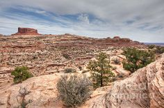Monitor Butte on the Colorado Plateau - http://imkirshphoto.artistwebsites.com/featured/monitor-butte-on-the-colorado-plateau-michael-kirsh.html
