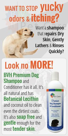 New Dog Shampoo among the Most Comprehensive Pet Washes in the Industry http://www.bvhpetcare.com/collections/grooming/products/dog-shampoo-conditioner
