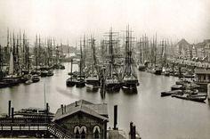 Hafen (1417×937)