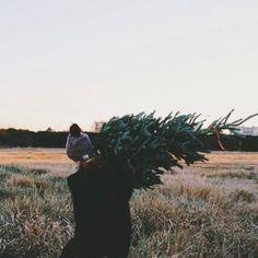 Bringing home the Holiday Tree