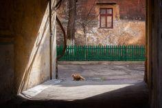 Odessa old courtyards