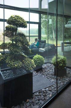 Home designs gallery amazing interior garden with modern glazed