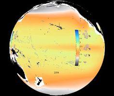 Ocean Acidification to Hit 300-Million-Year Max