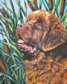 brown Newfoundland dog portrait art from an original painting by L.Shepard Throw Blanket by LA Shepard Dog Artist - x Brown Newfoundland Dog, Newfoundland Puppies, Dog Artist, Dog Portraits, Portrait Art, Labrador Retriever Dog, Bull Terrier Dog, Dog Tattoos, Oeuvre D'art