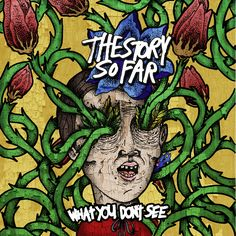 The Story So Far-What You Don't See