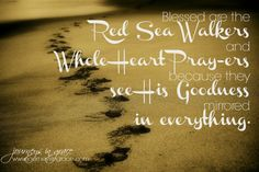 Red Sea Walking – Ps