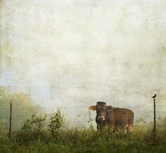 howdoyoudo? | Flickr - Photo Sharing!