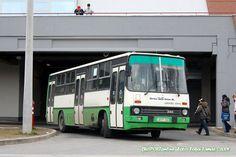 AFF-569 Busses, Public Transport, Transportation, Vehicles, Car, Automobile, Rolling Stock, Buses, Vehicle