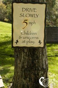 Could post at the corners of your street but say wedding guests and children at heart at play?