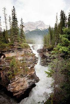 Athabasca Falls Alberta, Canada