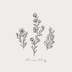 minnamay_botanical.png