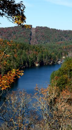 Beautiful Seed Lake View. In July of 1925, construction began on the Nacoochee development (Called Seed by some).  It was built between Burton Dam and the headwaters of Lake Rabun to take advantage of a 60-foot drop in the Tallulah River and between the two lakes.