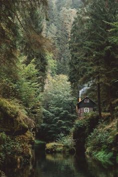 Cabin house in hidden forest woods magical places