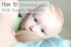 Naturally Increase Your Milk Supply - The Earthy Mama