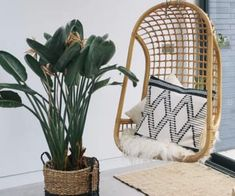 Garden Furniture Sets | MADE.com Blue Velvet, Cotton Velvet, Navy And Copper, Quiz Design, Ottoman Storage Bed, Tapis Design, Single Sofa, French Oak, Corner Sofa