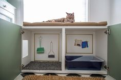 Creative place to hide litter box and supplies!