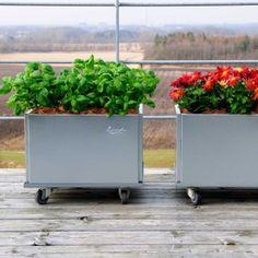 21-Kvadratiska-mobila-odlingslådor-galvaniserat-takterrassen