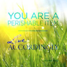 You are a perishable item. Live accordingly. -Unknown