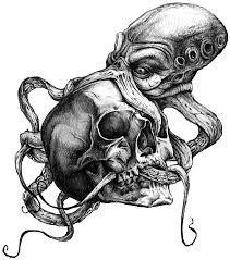 sketch of skull and osminous