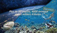 Aquarium Mare Nostrum  | Montpellier Méditerranée Métropole  menores de 3 gratis, packs familiares