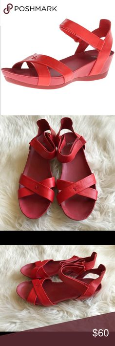 Camper Women's Red Micro Wedge Size 37 EUC Camper Women's Red Micro Wedge Sandals. Size 37. Preowned With Normal Wear ( no flaws). Please let me know if you have any additional questions and I will get back to you ASAP. Follow my store new items are added daily. Camper Shoes Sandals