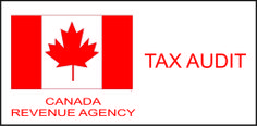 Do you have any idea what could trigger a CRA audit and if you don't then this info may help to prevent one Government Of Canada, Federal Agencies, Hot Spots