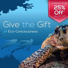 GIVE THE GIFT OF ECO-CONSCIOUSNESS!  Stream2Sea Holiday Sale: 25% off Full Sized ITEMS NOV 27-302015. (NO COUPON CODE NEEDED)  BONUS:  Sign up for our monthly newsletter on our website and get an ADDITIONAL 5% OFF!  #Stream2Sea #HOLIDAYSALE #BLACKFRIDAY #HappyThanksgiving #FamilyTraditions #  #MarineSafety #EcoConscious #Biodegradable #SkinCare #NaturalProducts #NaturalSunscreen #NonToxic #scuba #ScubaGirls #ScubaDiving #UnderwaterLife #SeaLife #CoralReef #ReefProtection #ProtectWhatYouLove…